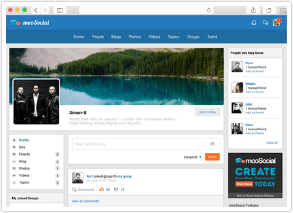 social network software profile page